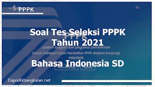 soal-tes-seleksi-pppk-materi-soal-bahasa-indonesia-sd