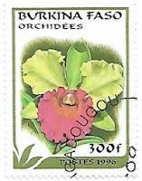 Selo Orquídea Cattleya
