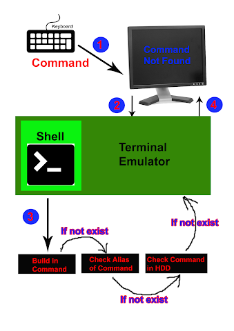 Shell Command Execution Order