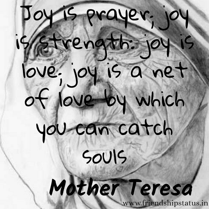Best 20 Mother Teresa Quotes Love To All