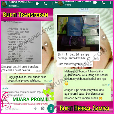 Agen Herbal Bee di Gresik