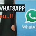 Cara Manyadap WhatsApp Jarak Jauh Tanpa Menyentuh HP Korban