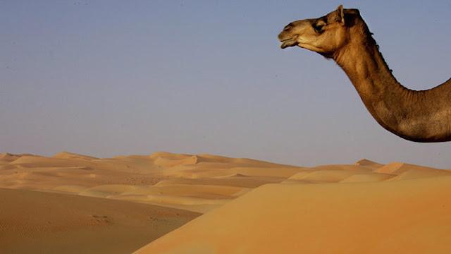 Planean construir una montaña artificial en el desierto