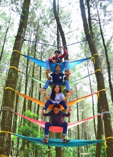 Hammockan di Hutan Pinus Kragilan