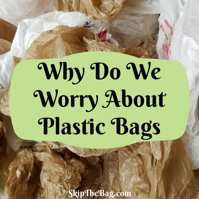 Why Do We Worry About Plastic Bags