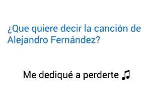 Significado de la canción Me Dediqué A Perderte Alejandro Fernández.