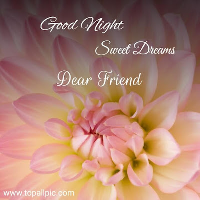 wishes Good Night sweet dreams Dear friends Images