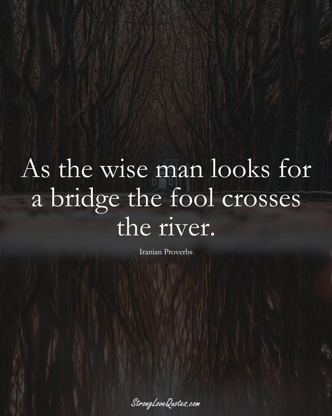 As the wise man looks for a bridge the fool crosses the river. (Iranian Sayings);  #MiddleEasternSayings