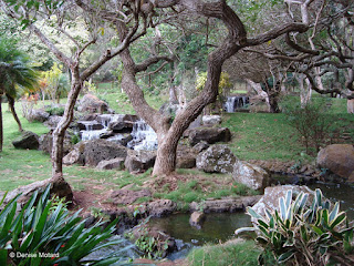 Beautiful Garden behind the lodge - Four Seasons Lodge, Lanai