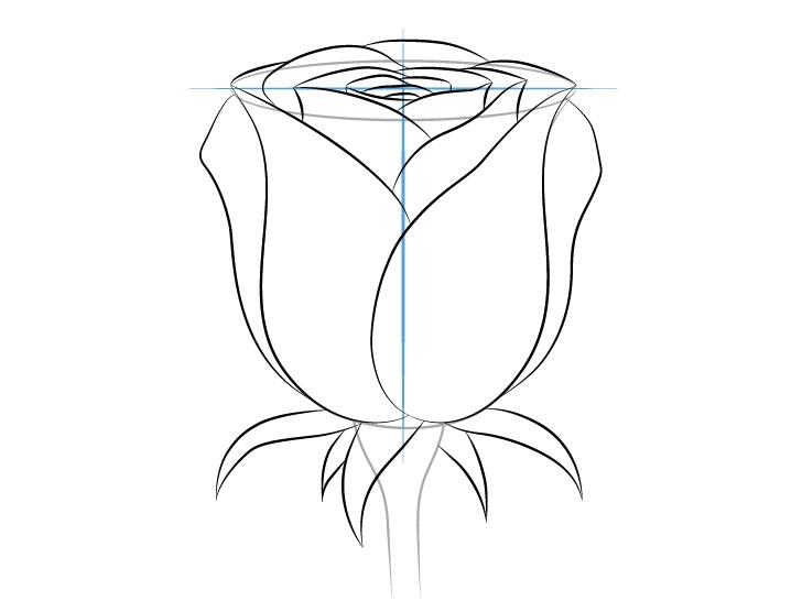 Gambar kelopak luar mawar