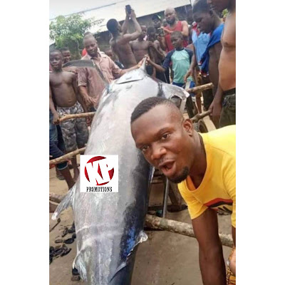 A Nigerian Man Captured A Blue Marlin Fish Worth $2.6 million. Him And His Village People Ate It. (Watch Twitter Reactions)