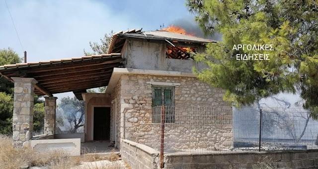 Τραυματισμός δασοφύλακα στην πυρκαγιά στο Δορούφι Ερμιονίδας