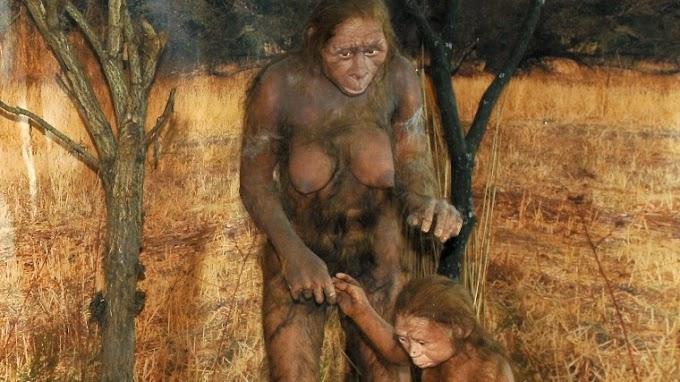 Viszonylag könnyű lehetett a szülés kétmillió éve