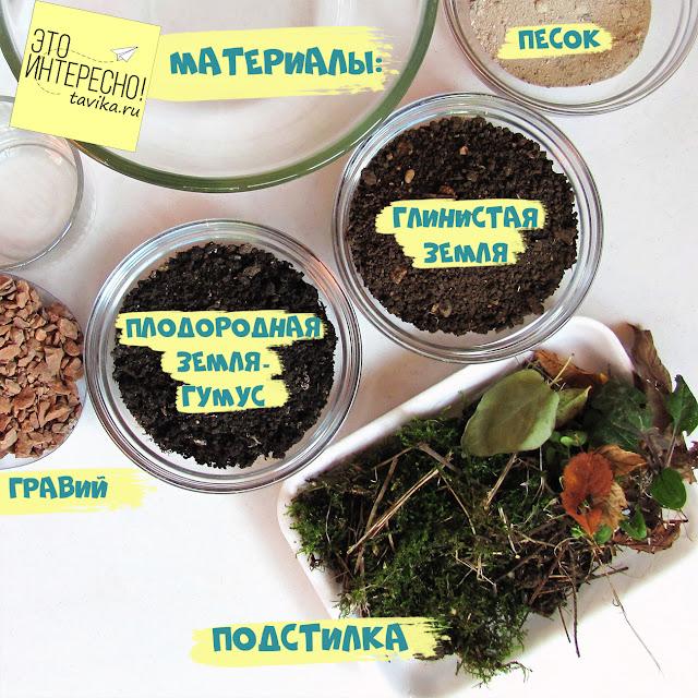 строение почвы для детей