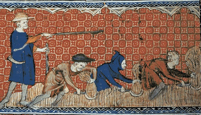 Feudalism in Europe and Classes of Society