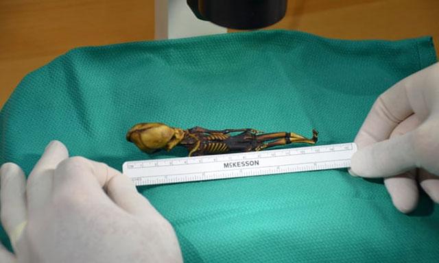 Ata yaitu nama untuk jasad mumi yang penampilannya sungguh tidak lazim Terungkap Identitas Atacama Mumi Kecil yang Bentuknya Mirip Alien