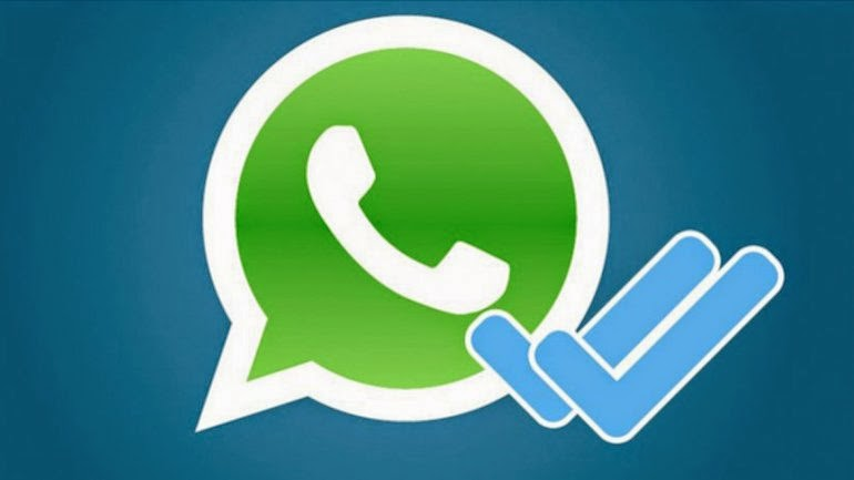 whatsapp con putas marcha atrás