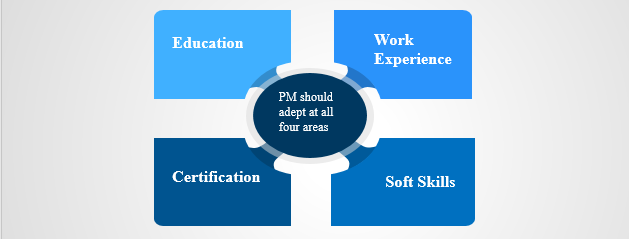 PM, Project manager