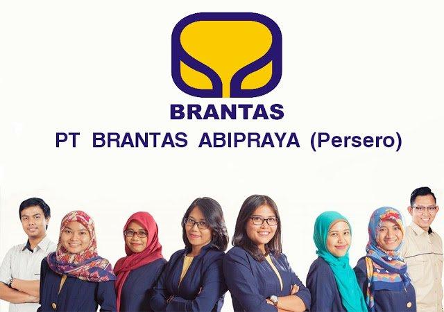 Lowongan Kerja PT. Brantas Abipraya (Persero), Jobs: Management Trainee.