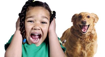 """فوبيا الكلاب """"سينوفوبيا"""" .. ما علاج الخوف من الكلاب؟"""