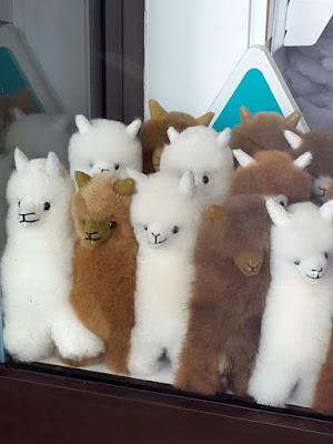 Alpaca plush toys in Sydney