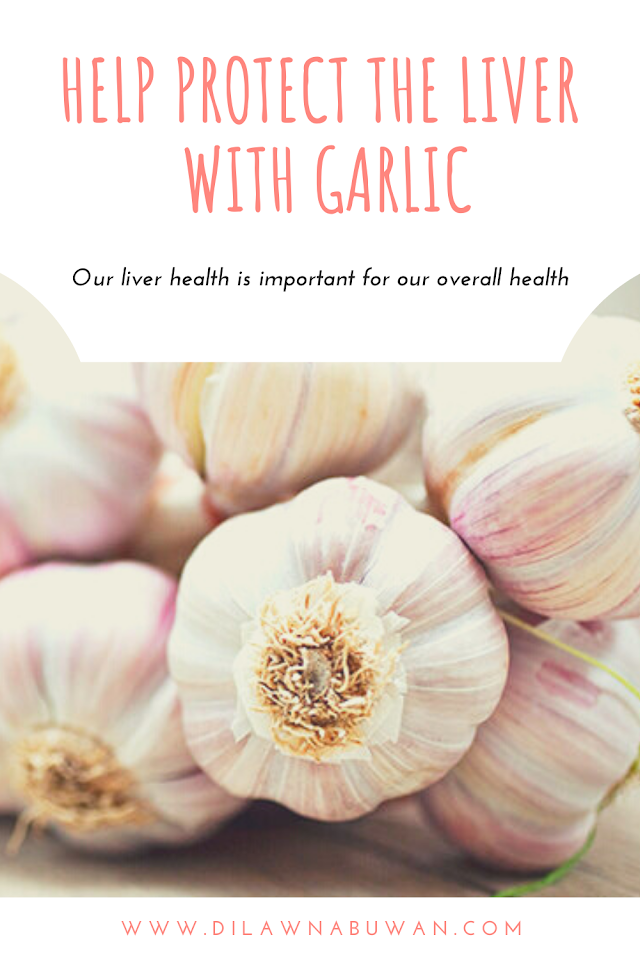 Help Protect The Liver With Garlic