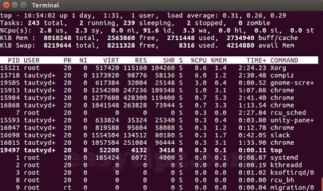 (Linux Command Line) Part 1 - Linux Commands for Server Management and Monitoring