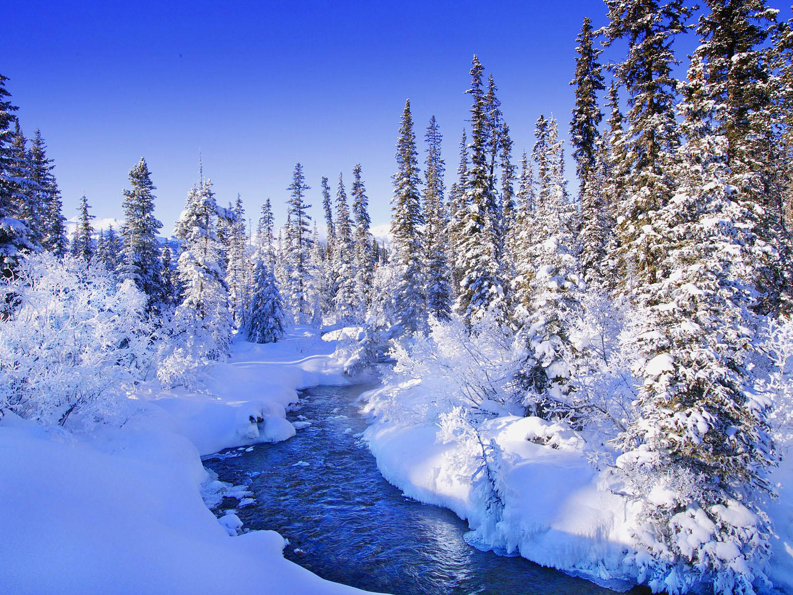 wallpapers: Snow Wallpapers