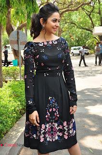 Actress Rakul Preet Singh Pictures in Short Dress at Sarrainodu Press Meet  0063.JPG