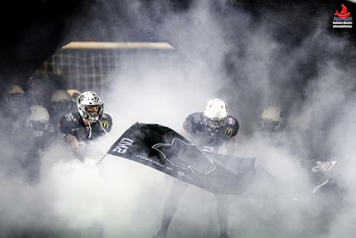 CEFL Teams: Thonon Black Panthers of France