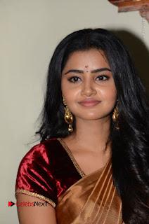 Actress Anupama Parameswaran Stills in Silk Saree with Shatamanam Bhavati Team at Sandhya Theater  0026.JPG