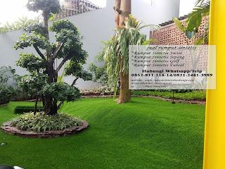 desain taman rumah minimalis dengan rumput sintetis