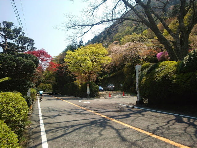 東海道 国道1号 三河屋旅館 蓬莱園