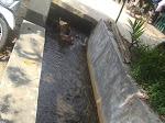 Irigasi Bandar Panjang Selesai ,  Air lancar, Masyarakat Berterimakasih