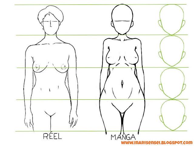 Proportions du buste d'une femme entre manga et réalité
