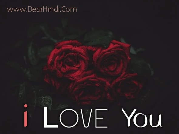 i love you rose images photo free download