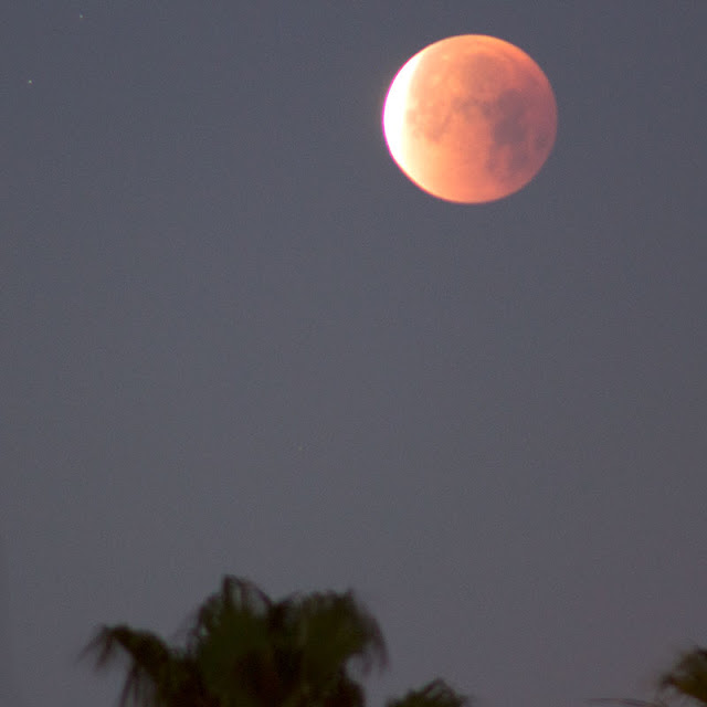Eclipsed moon at its darkest, 300mm, 1 second, 6:18AM (Source: Palmia Observatory)