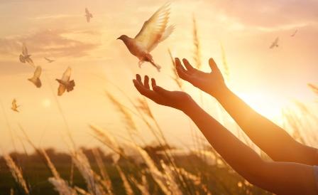 Memaafkan / Forgiveness (Pengertian, Aspek, Jenis, Tahapan dan Faktor yang Mempengaruhi)