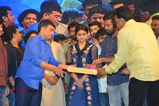 Nenu Local Audio Launch Stills  0414.JPG