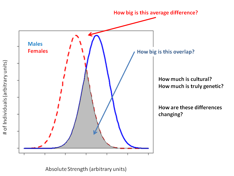 Male Female Distribution