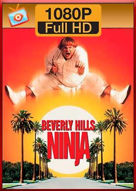 Descargar Un ninja en Beverly Hills hd latino mega