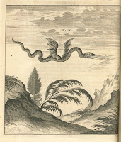 An illustration of a flying, legless dragon or wyrm, breathing fire.