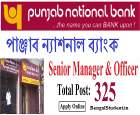 PNB Recruitment 2019 - Apply Online for 325 Vacancies of Manager Post