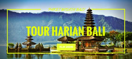 PAKET TOUR HARIAN BALI
