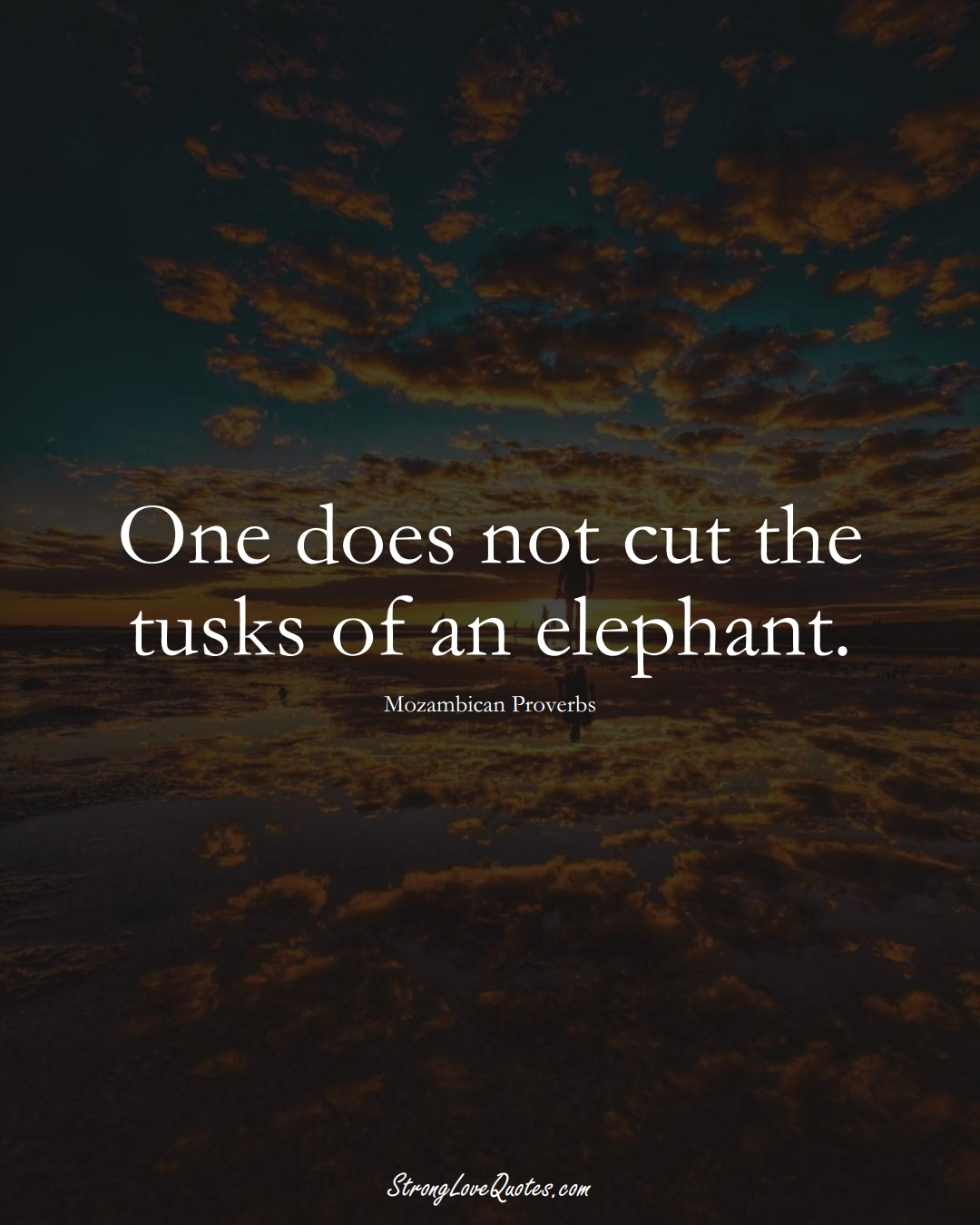 One does not cut the tusks of an elephant. (Mozambican Sayings);  #AfricanSayings