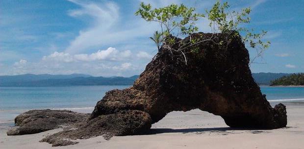 Batu Unik Ini Hanya Kamu Dapatkan Di Morotai Anak Subaim