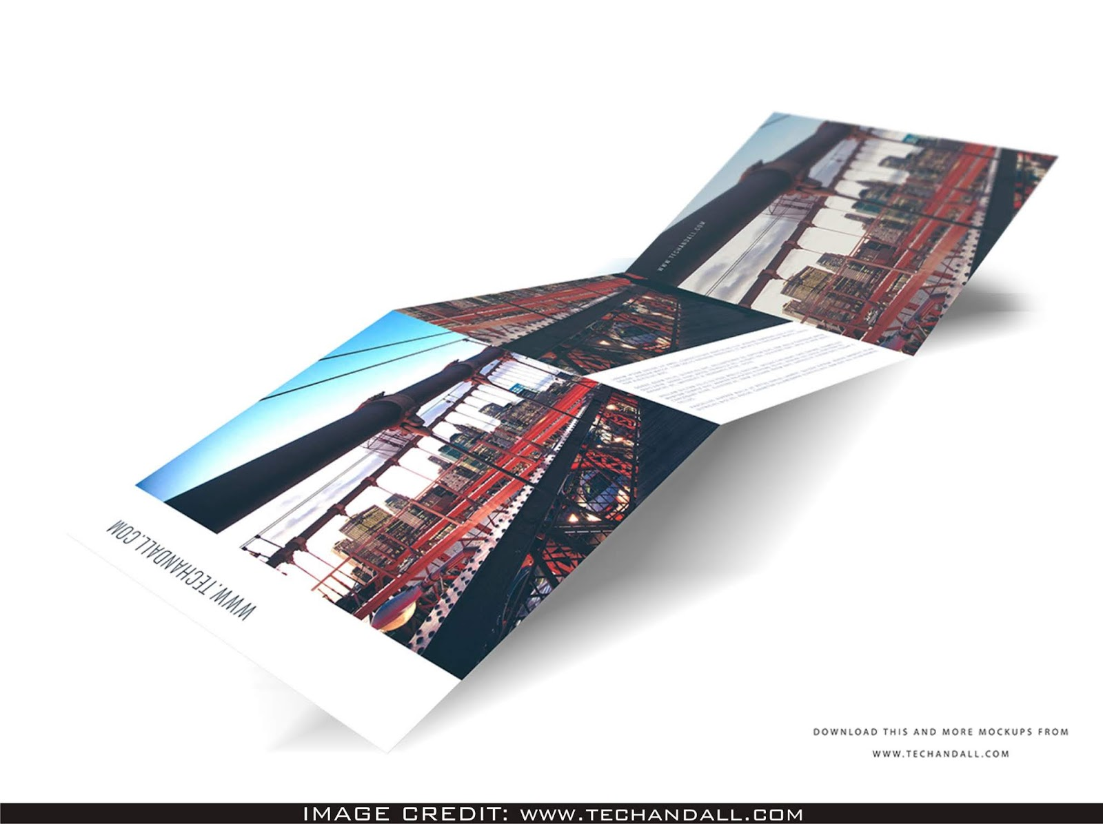 8x8 tri-fold brochure mockup free download