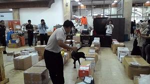 K-9 : Unit Pelatihan Anjing Pelacak Bea Cukai