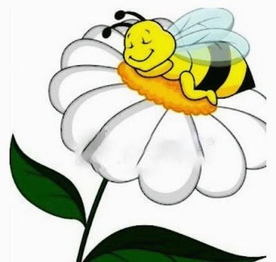 Abeja dormilona almorzó mucha miel