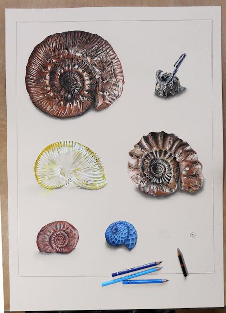 4 fossiles et 2 artefacts de plastique jaunes et bleus